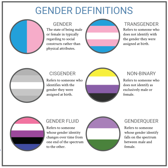 genderidentities-infographic-edits-01
