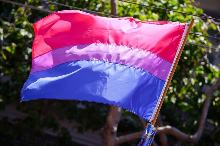 1920px-The_bisexual_pride_flag_(3673713584)